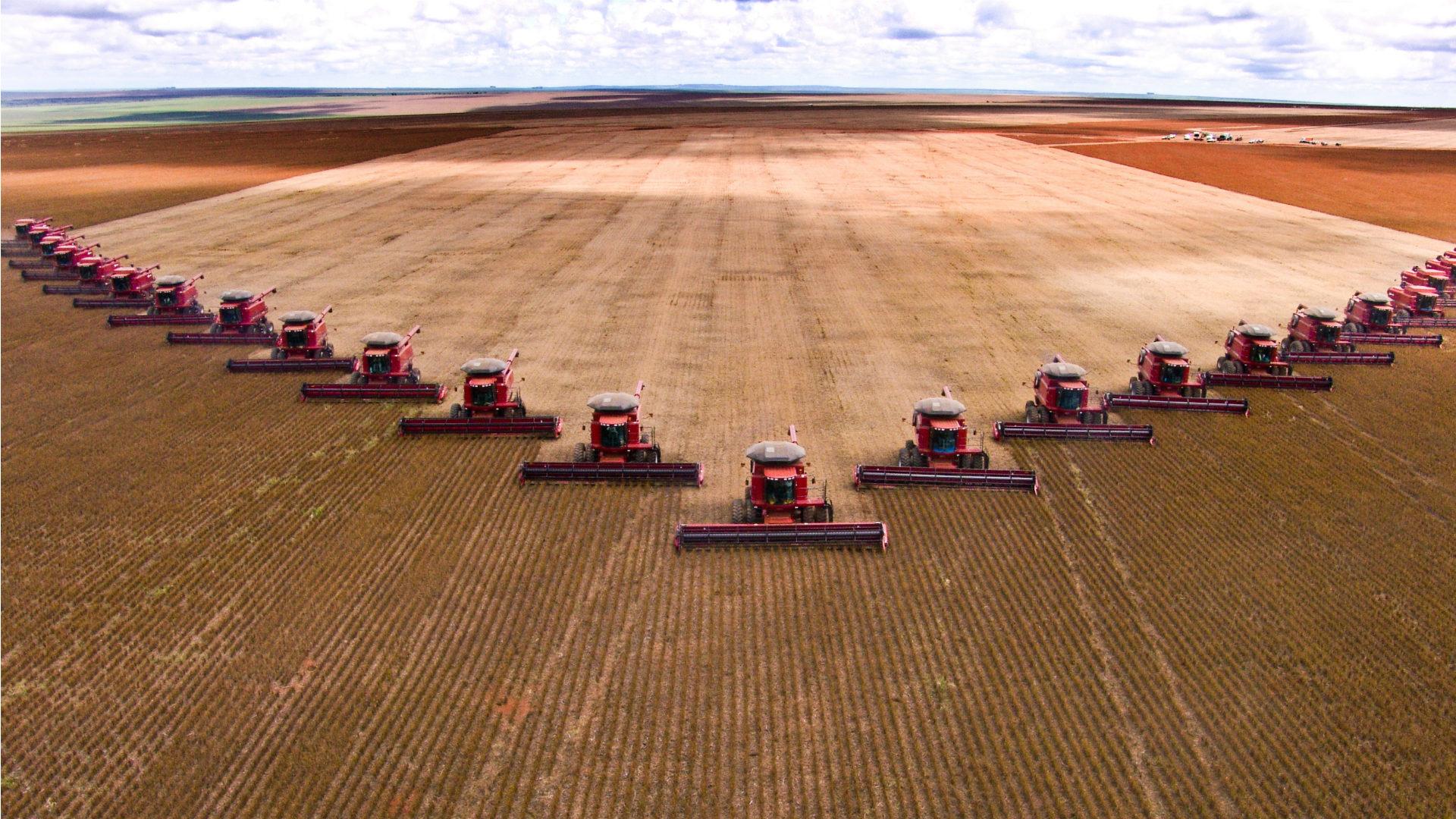 Lavoura de soja no Mato Grosso